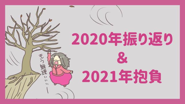 2020年振り返り&2021年抱負